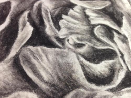 Charcoal 4